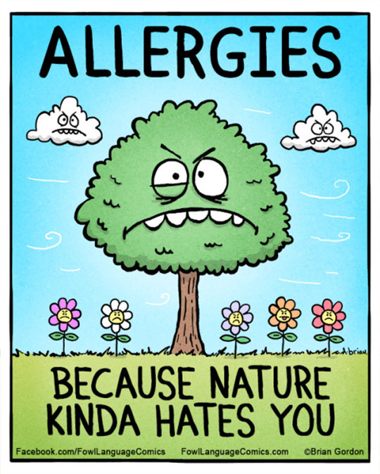 Funny Allergy Quotes : funny, allergy, quotes, Funny-Spring-allergy-tree-nature-cartoon.jpg, (540×674), Allergies, Funny,, Language, Comics,, Funny