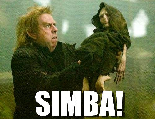 Image result for memes about harry potter