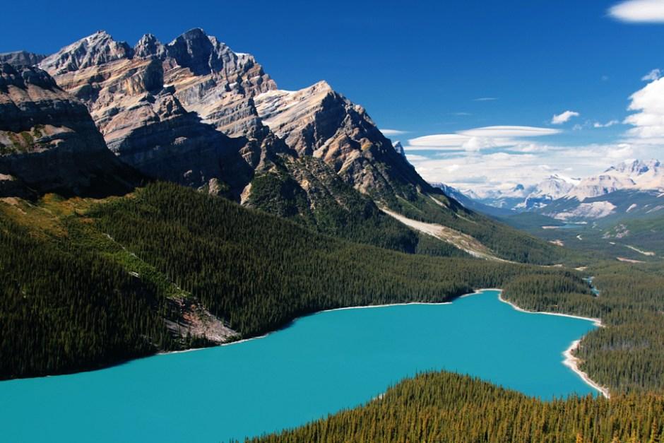 Peyto Lake a.k.a. Bear Lake in Banff National Park.