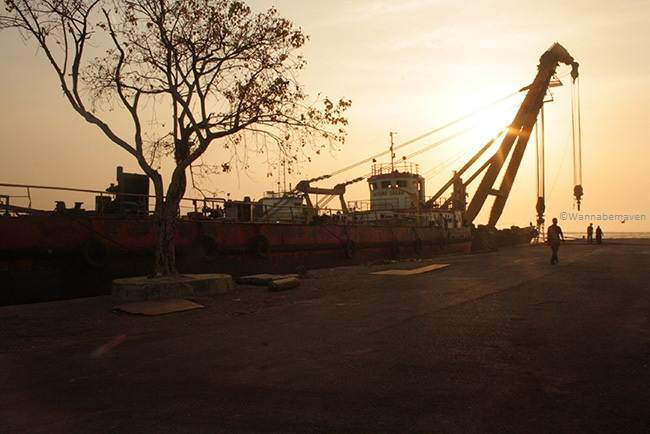 Operational Ships - Sewri Jetty flamingos