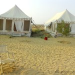 My Stay at Prince Desert Camp, Jaisalmer – In the Middle of Nowhere