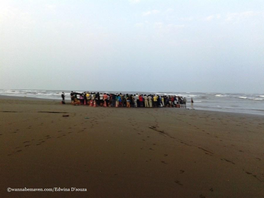 velas turtle festival-velas-konkan beach