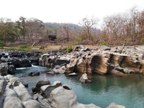 Satpura tiger reserve