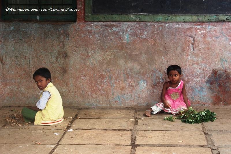 Purushwadi fireflies festival-Offbeat maharashtra