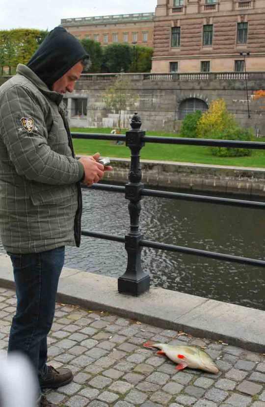 Het water rond de eilanden van Stockholm is zo schoon dat je er volop vissen kan vangen en meer: het water is zelfs drinkbaar.