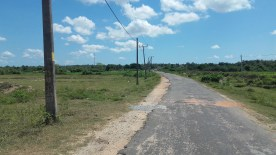 Road to Batticaloa from Bibila via Maha Oya