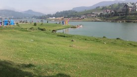 Lake-Gregory-Nuwara-Eliya8