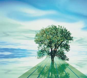 La Fundación Canal lanza una convocatoria de arte medioambiental