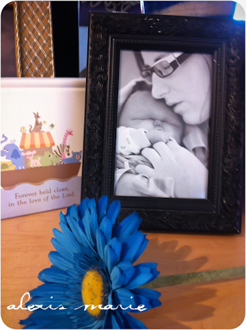 Baby death rememberance photographs and art copyright Alexis Marie Chute Wanted Chosen Planned-002