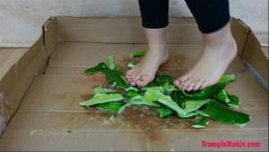 Caroline Barefoot Cucumber Crush