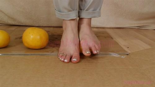 Zelda's Barefoot Grapefruit Crush