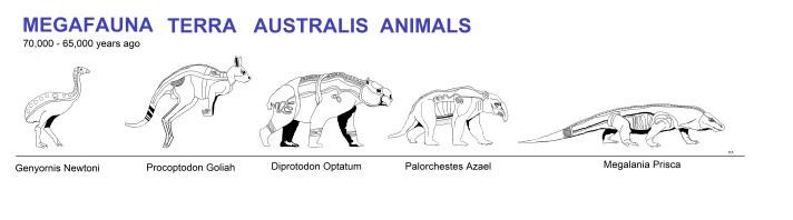 Megafauna Australian Animals