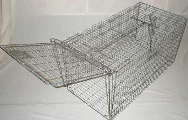 90cm Fox Trap