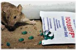 Mouseoff Packet with mouse