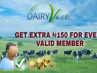 Dairy Vest Reviews