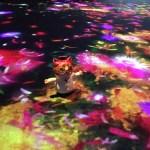 体験型デジタルアートミュージアム「チームラボボーダレス」
