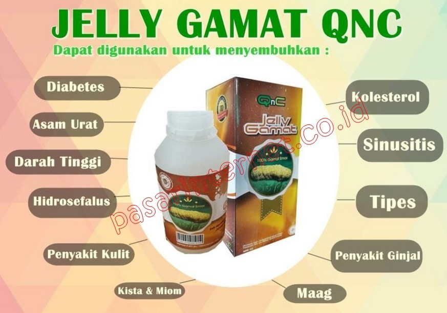 Manfaat QNC Jelly Gamat