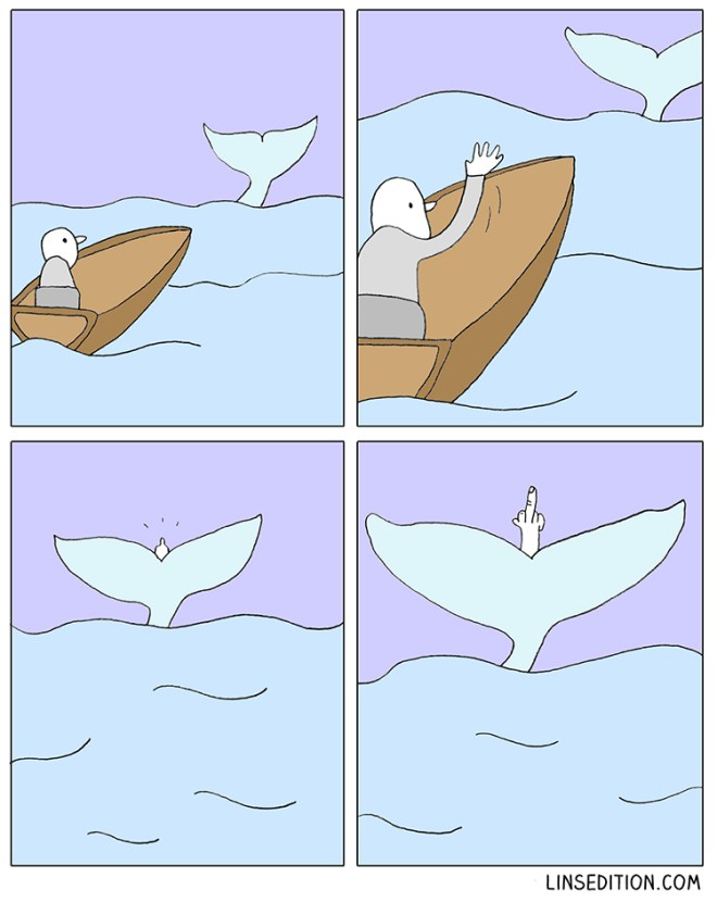 whale-watching-comic-fluke-finger-linsedition