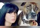 فرانس میں کتوں کے حملہ میں 6 ماہ کی حاملہ کی موت
