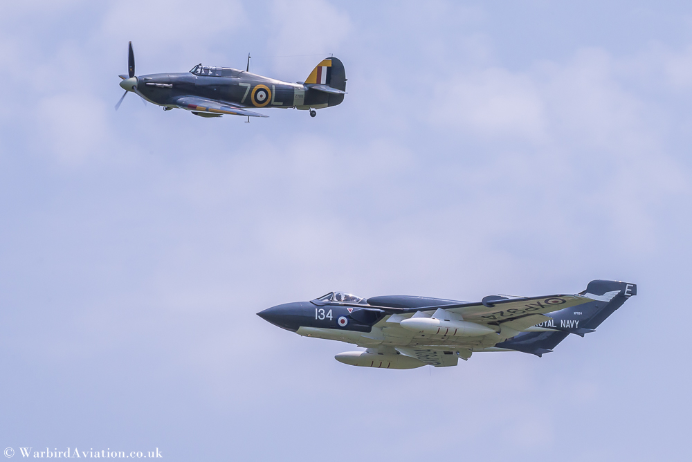 Sea Hurricane and Sea Vixen