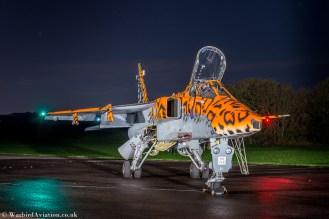 Jaguar XX119 'Spotty'