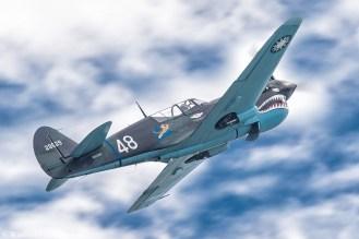 P40 Warhawk 29629 N1226N