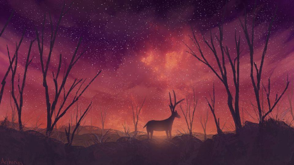 Aurora at night by EyeOfSemicolon