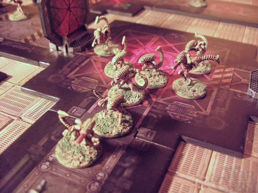 Classic Bug Hunt infested with Khurasan 15mm