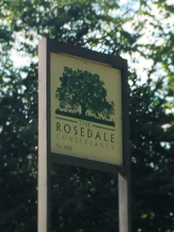 rosedale2