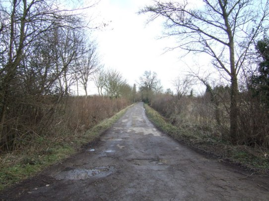 Unnamed track into the marshes Off the Buckland Road south of Bampton, By Jonathan Billinger, CC BY-SA 2.0