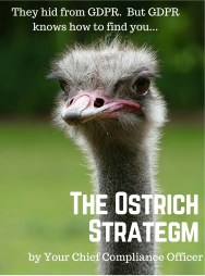 TheOstrichStrategy