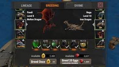breeding war dragons