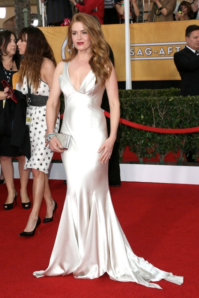 WTFSG-2014-screen-actors-guild-awards-isla-fisher