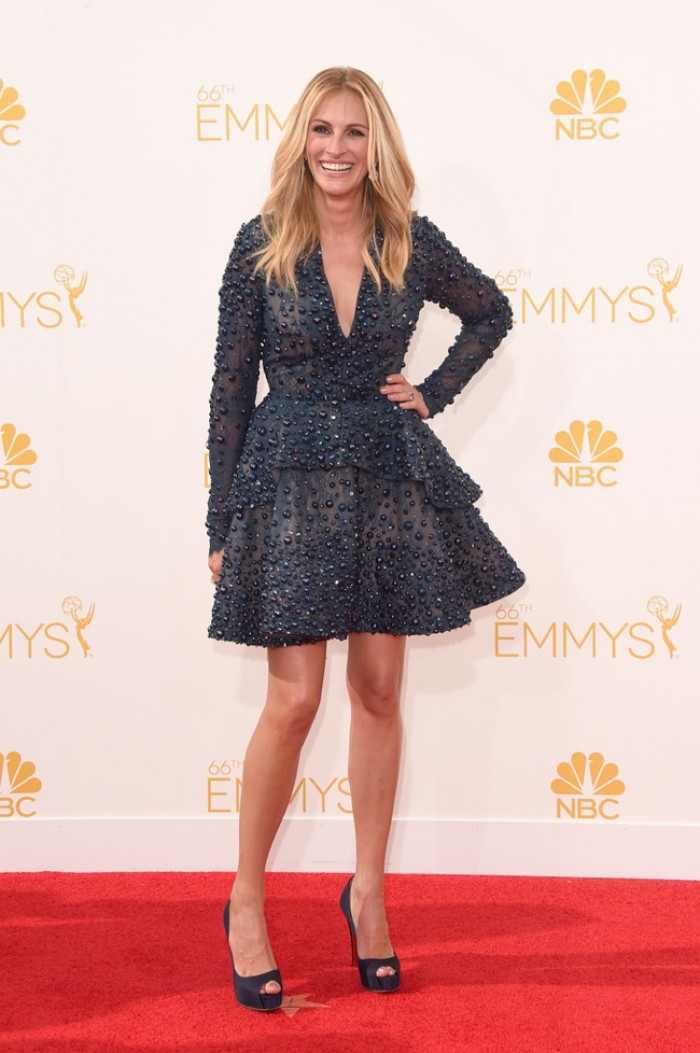 WTFSG-emmys-2014-red-carpet-julia-roberts-elie-saab