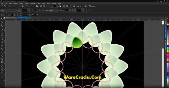 CorelDRAW Graphics Suite 2019 Activation Code
