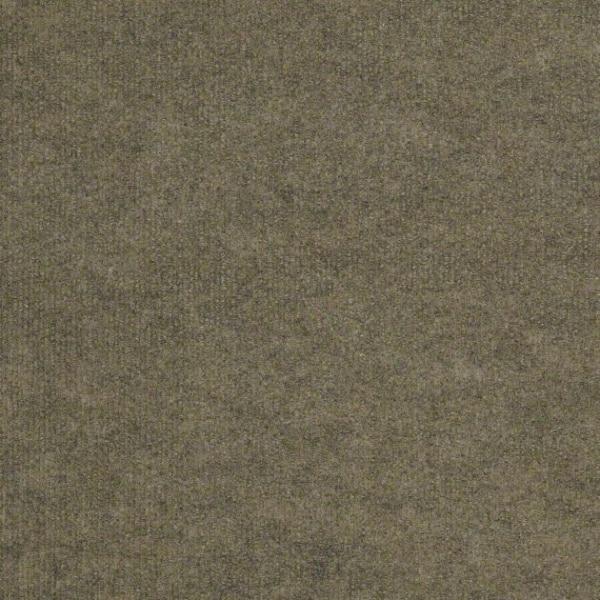 Shaw Outdoor Carpet Backdrop II