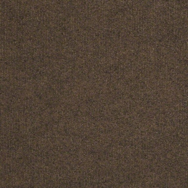 Shaw Outdoor Carpet Windsurf