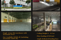 Tuas View B2 Factory For Rent