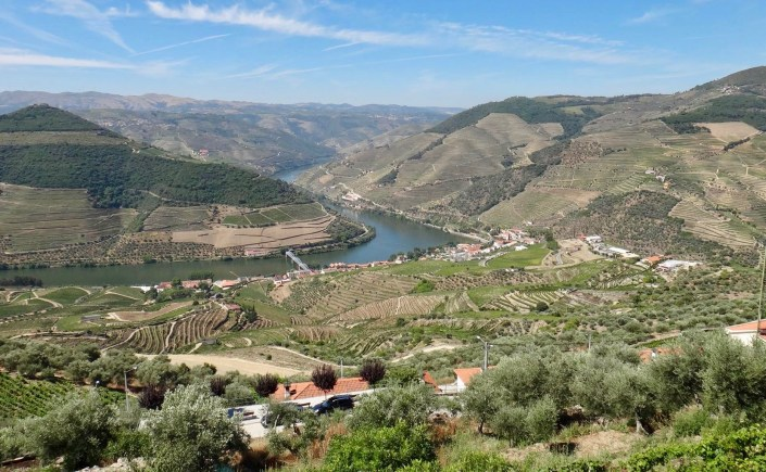 Image result for doc douro