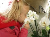 I showed her to smell the orchids.