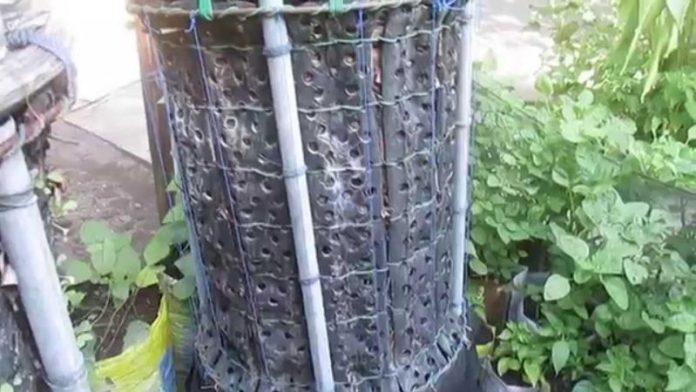 reaktor cacing