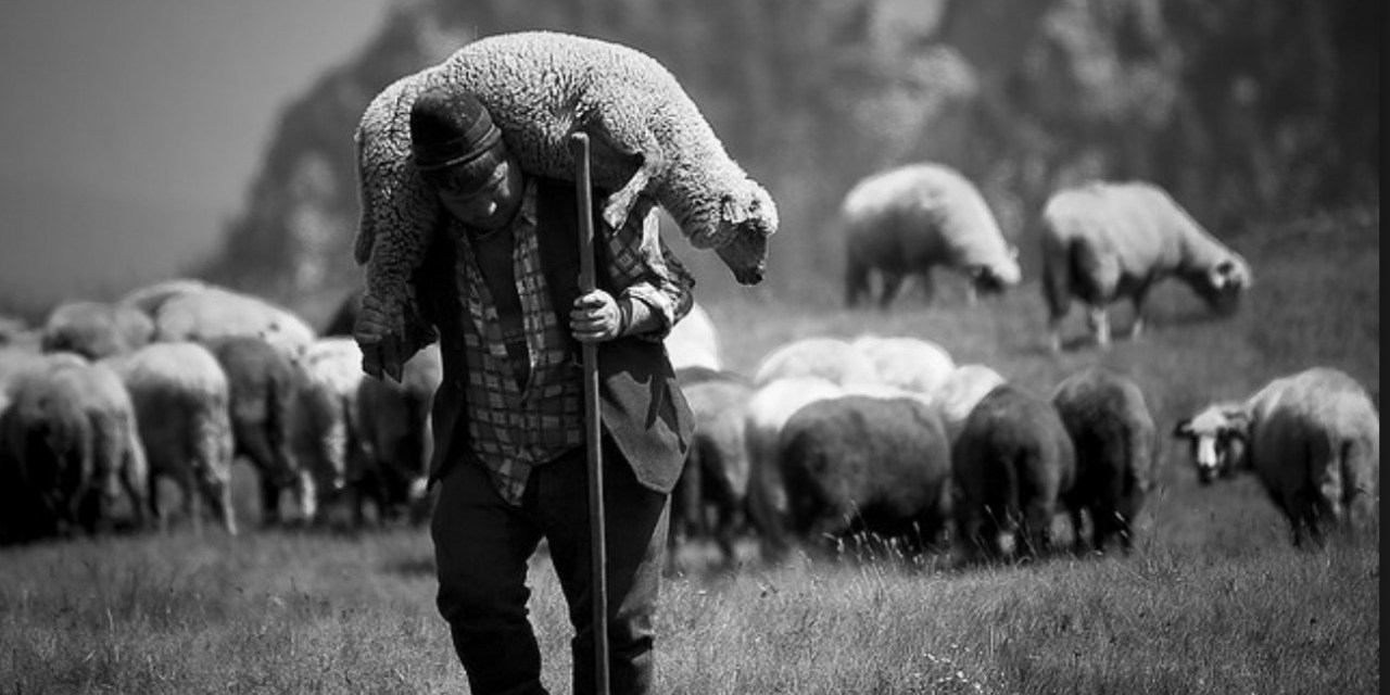 Revoice and faithful pastoral care (1): shame…