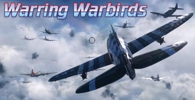 Warring Warbirds