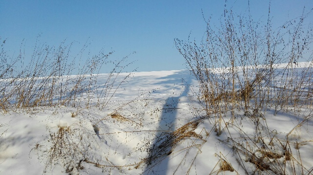 Zimowe dolinki podkrakowskie