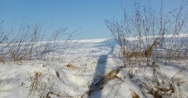 doliny krakowskie zima 2017