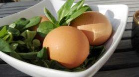 galaretka z jajkami warzywami i szynka