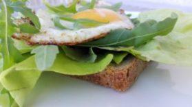 jajko sadzone na sałacie
