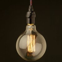 Giant light bulb ceiling light - 12 species For A Perfect ...