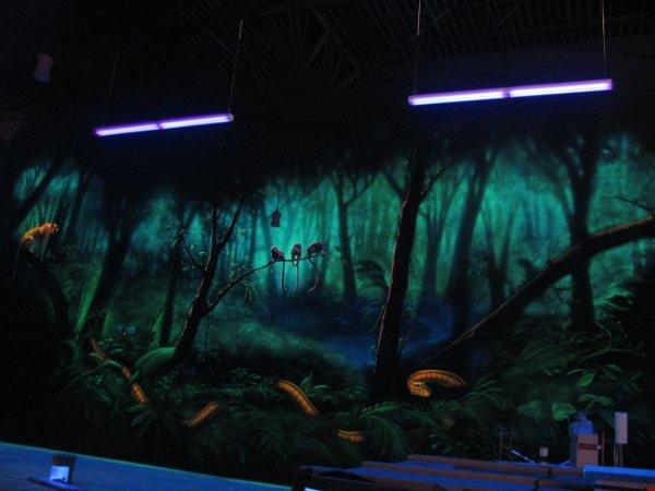 Black Light Wall Murals