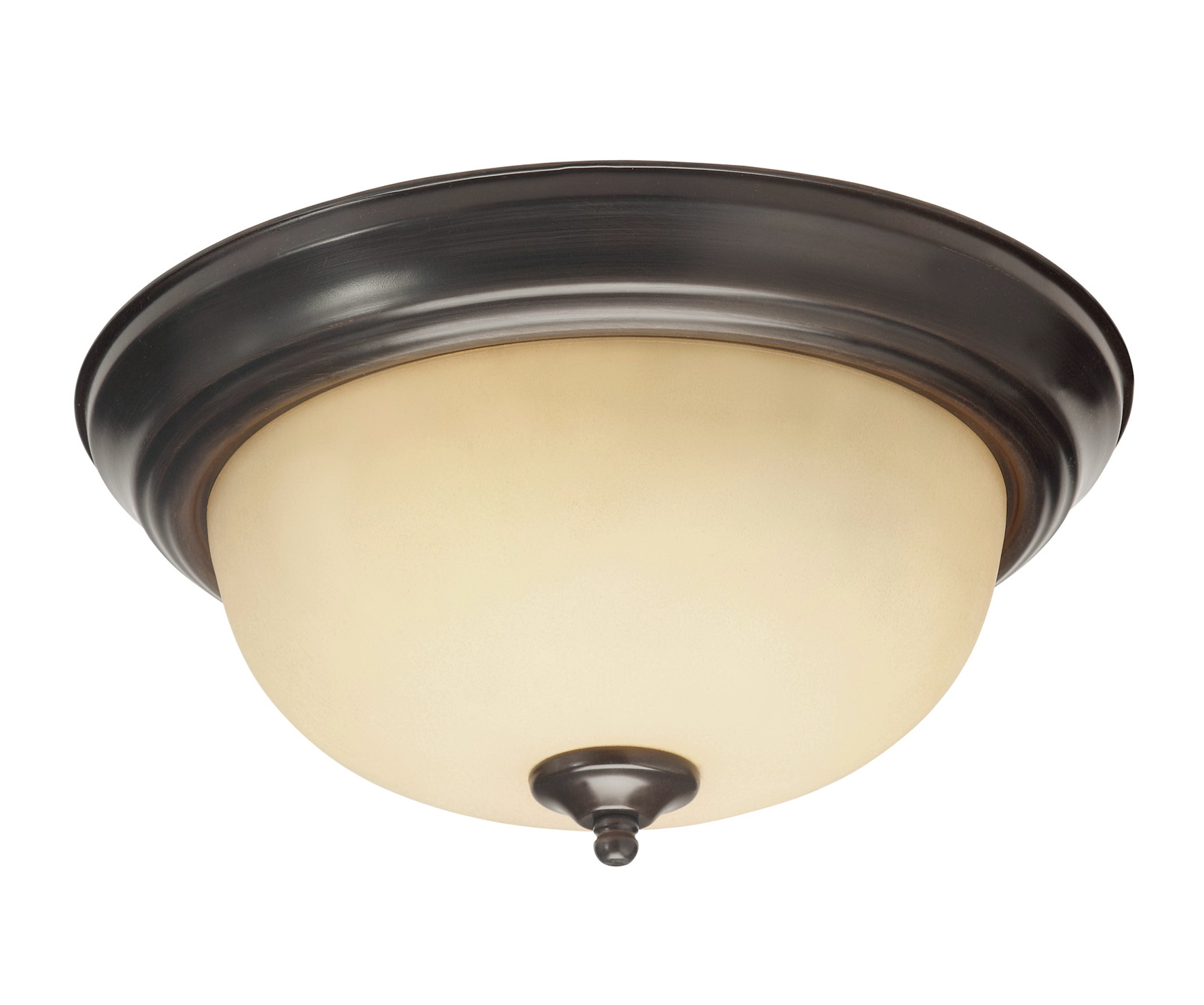 Ceiling lamps home depot